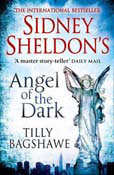 Angel of the Dark (Paperback)